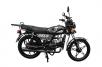 Модед Wels TrueSpirit 110cc