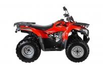 Квадроцикл WELS ATV Bison